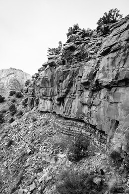 A sandstone cliff seen from the Watchman trail in Zion.