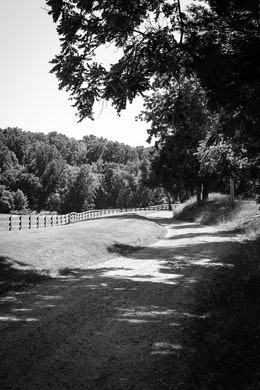 A winding dirt road near James Madison's Montpelier, in Orange, Virginia.
