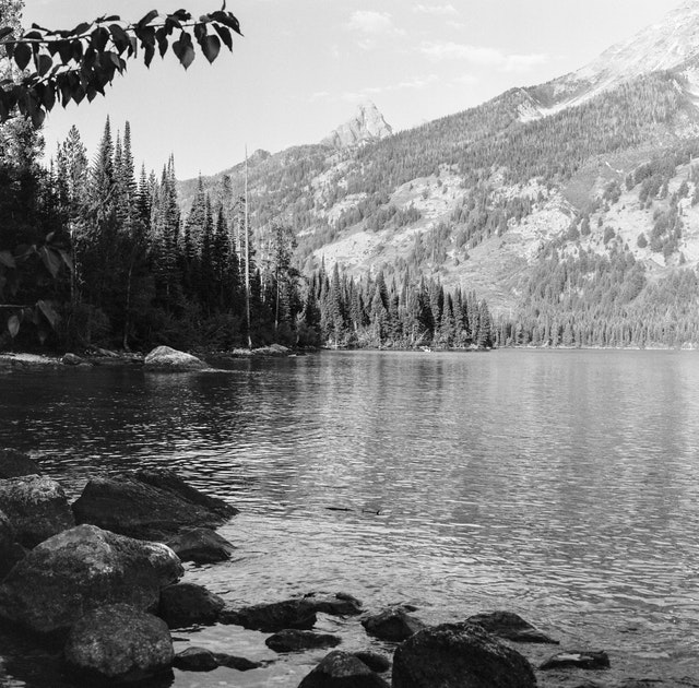 The shores of Jenny Lake, with the Tetons in the background.