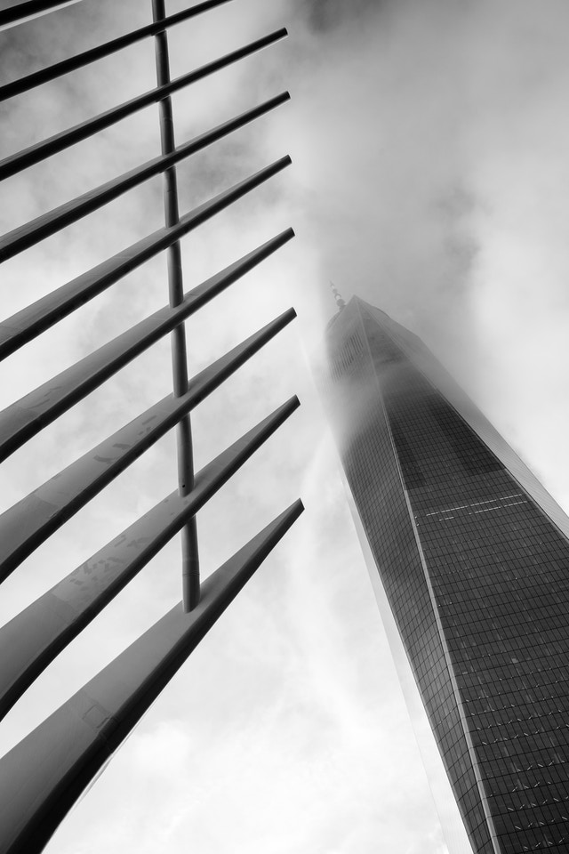 The World Trade Center shrouded in fog, seen next to the ribs of the Oculus.