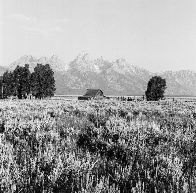 The John Moulton Barn in Mormon Row, with the Tetons in the background.