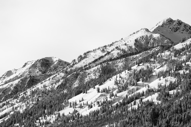 One of the mountains in the Teton range, covered in snow and trees, seen from the Taggart Lake Trailhead.