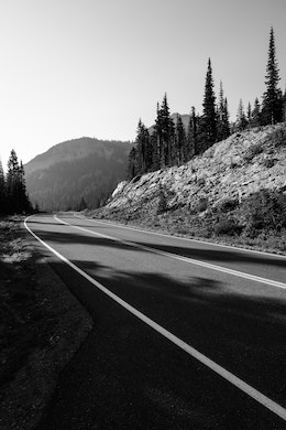 A curving road near the Reflection Lakes in Mount Rainier National Park.