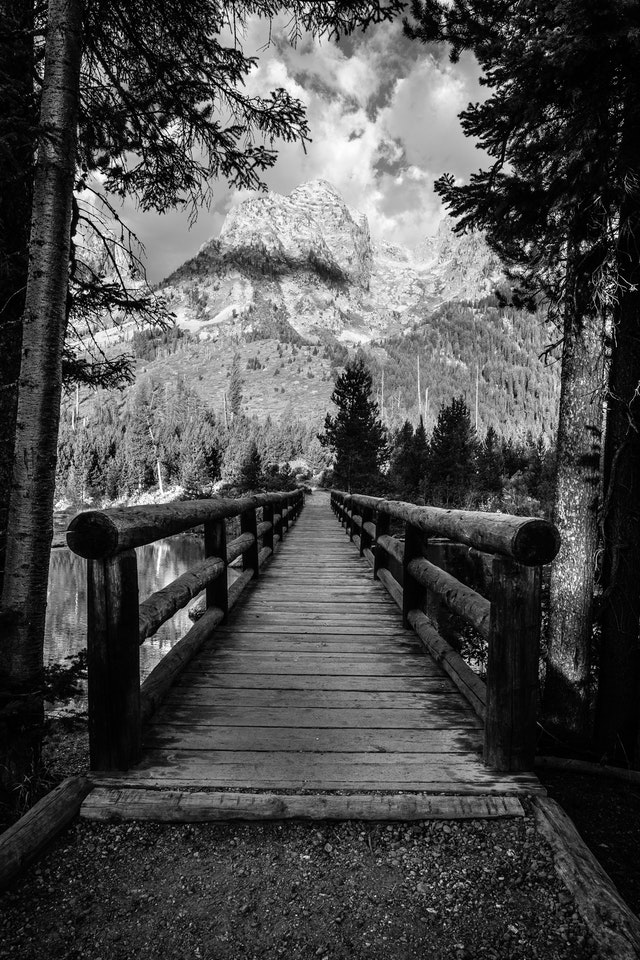 A head-on view of the bridge crossing over the outlet of String Lake, framed by two trees. Mountains can be seen in the background.