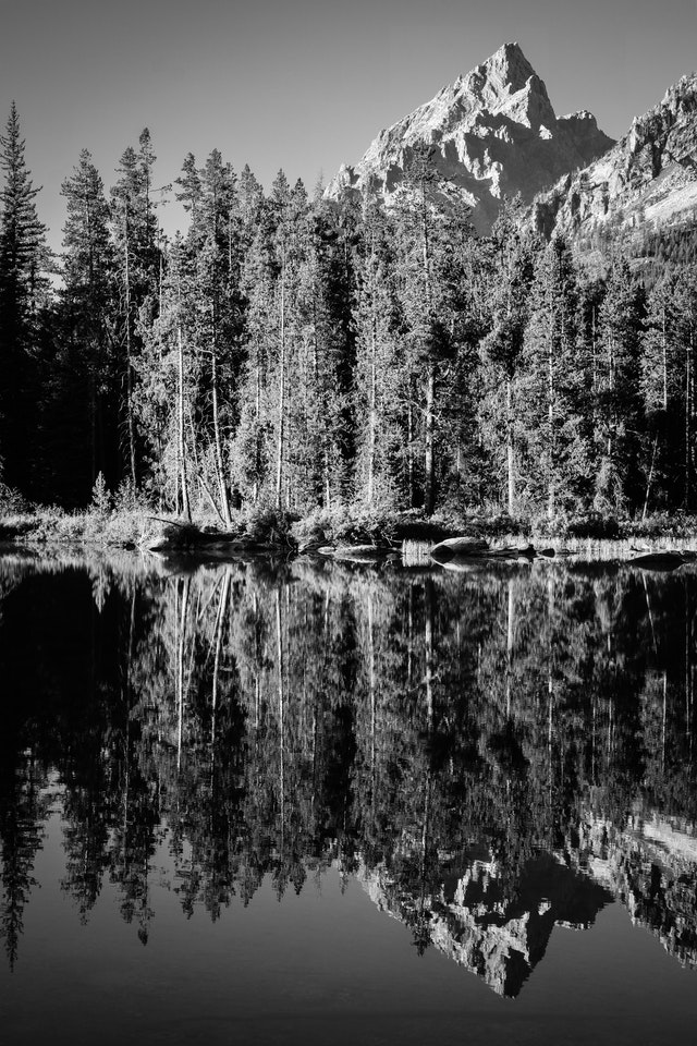 Teewinot Mountain, seen behind a line of trees, reflected on the surface of String Lake.