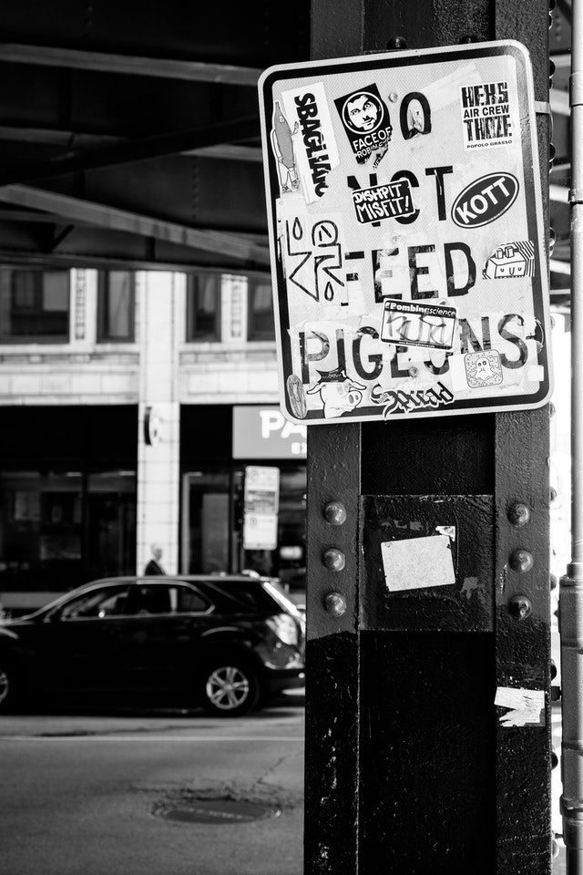 "A ""do not feed pigeons"" street sign covered in stickers."