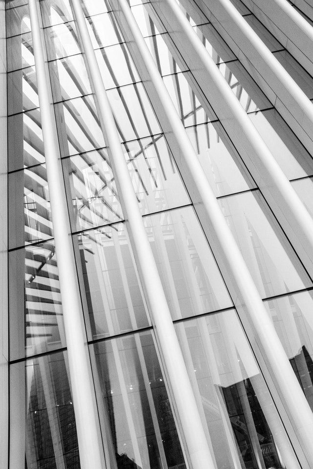 The ribs of the Oculus, reflected in its glass.