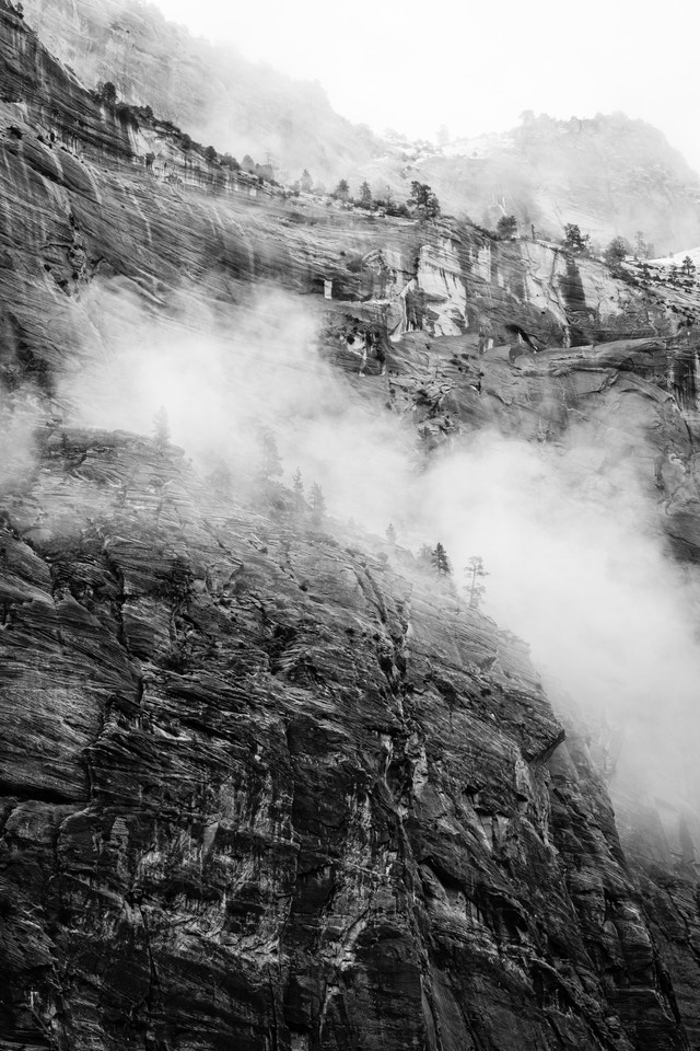 A rock wall in the Great White Throne, with some trees seen in the fog.