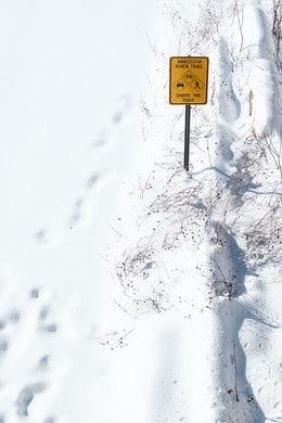 """A sign that reads """"Anacostia River Trail"""", in the snow."""