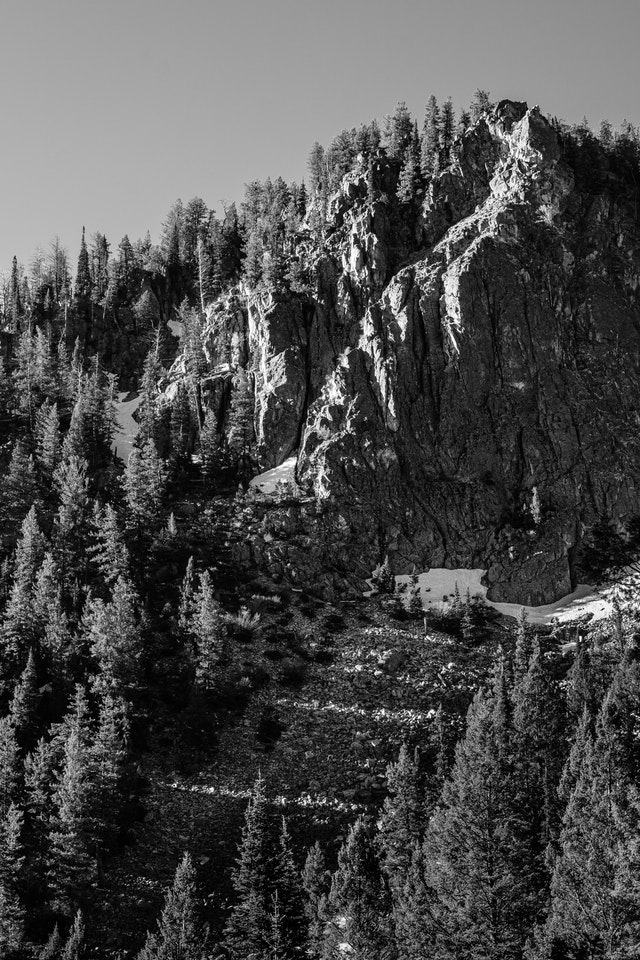 The wall of Granite Canyon, covered in pine trees, and sunlit from the side, with bands of light along the rocks.