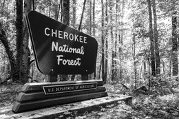 A Forest Service sign at Cherokee National Forest in Tennessee.