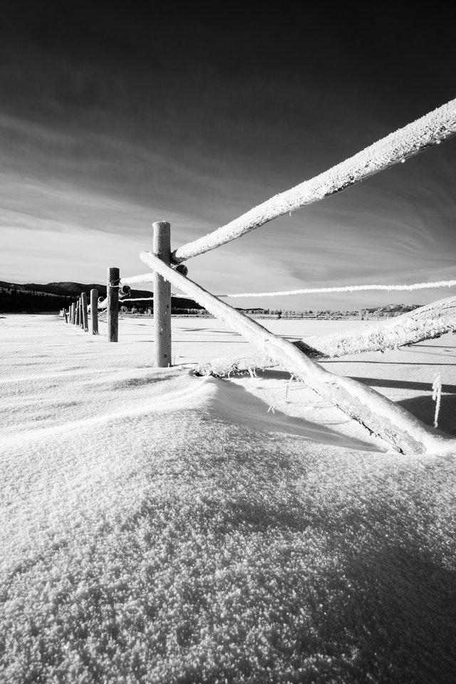 A frost-covered fence in the snow at Elk Ranch Flats.