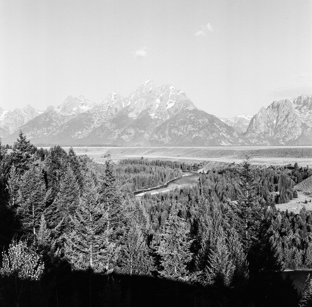 The Tetons from the Snake River overlook.