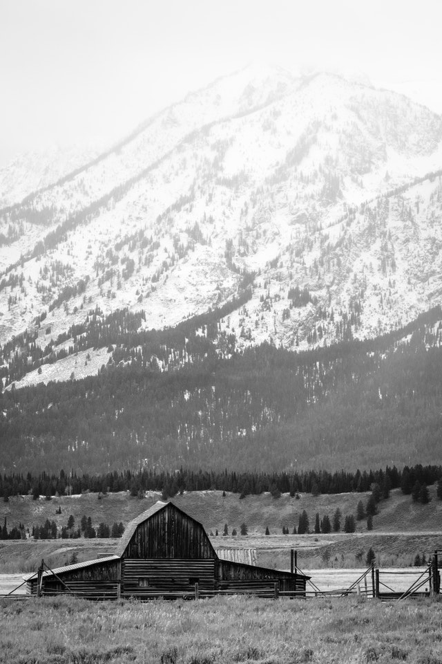 A slightly different angle on the John Moulton Barn, with the snow-covered Tetons in the background.