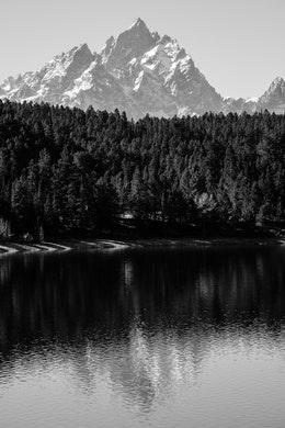 Grand Teton and Teewinot Mountain reflected off the waters of Jackson Lake, behind a line of trees at Grand Teton National Park.