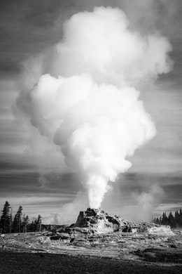 A steam column rising off of Castle Geyser during an eruption.