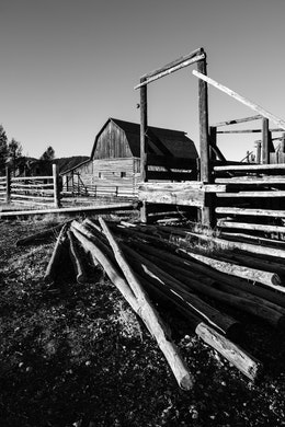 A pile of logs next to the John Moulton barn at Mormon Row, in Grand Teton National Park.