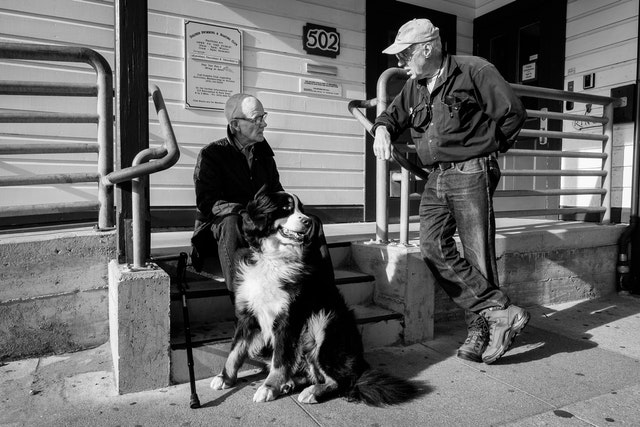 Two old men and a dog at Fisherman's Wharf.