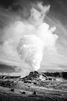 A steam plume rising off of Castle Geyser during an eruption.