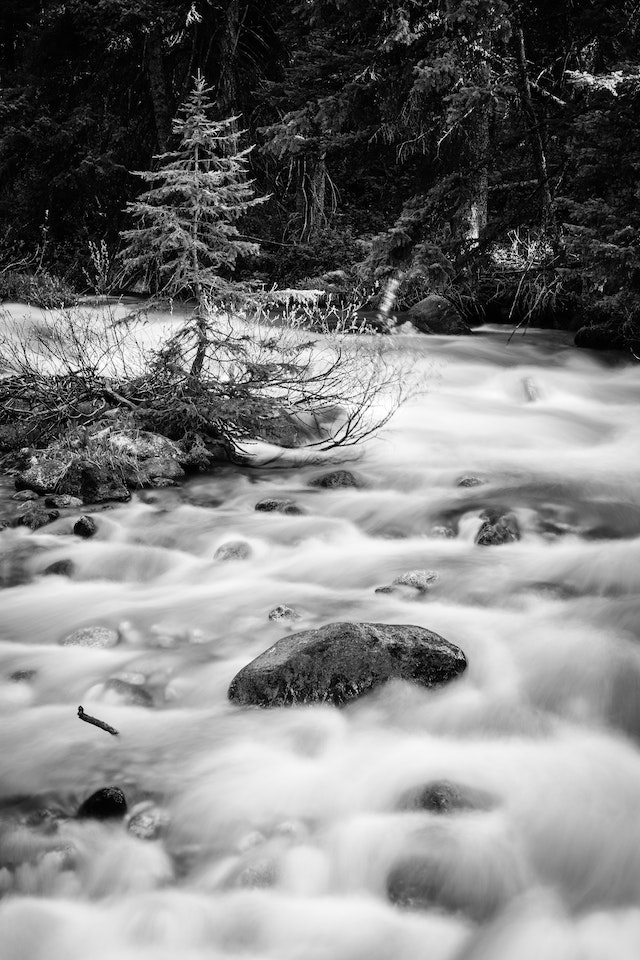 A long exposure photograph of Granite Creek, flowing around a small pine tree and a boulder.