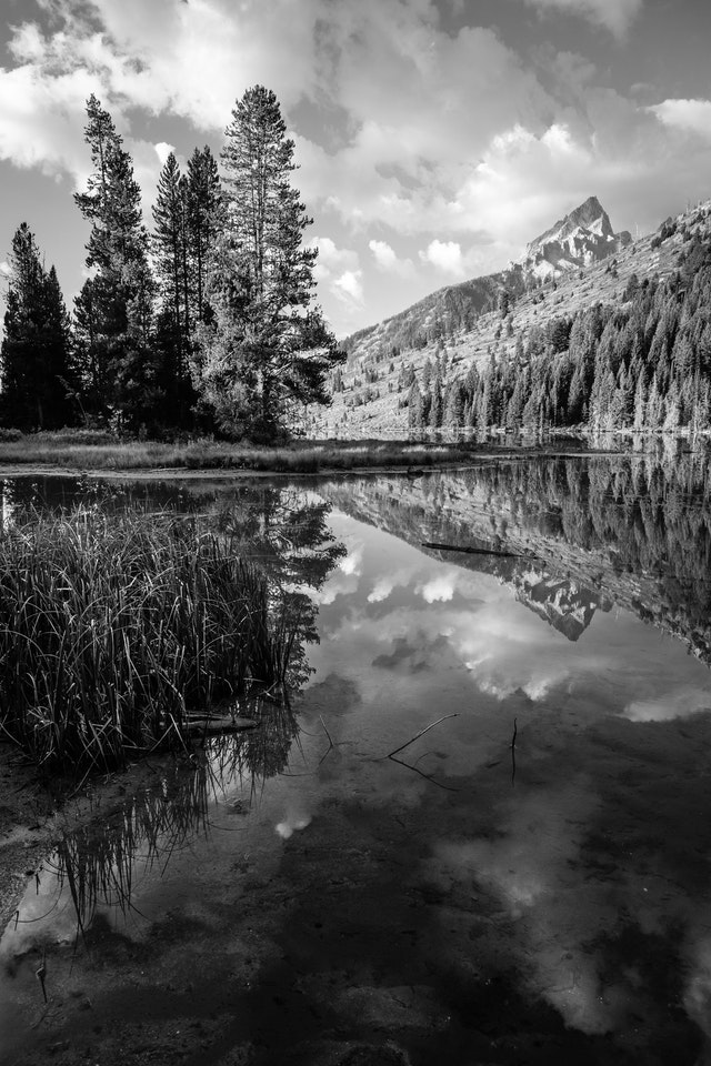 Teewinot Mountain, reflected off the surface of String Lake.