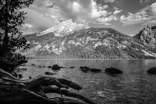 Teewinot Mountain, seen from the shore of Jenny Lake. In the foreground, a tree stump and some rocks in the water.