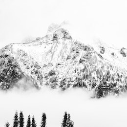 Buck Mountain, covered in fresh snow and surrounded by clouds. In the foreground, a line of trees with fall foliage.