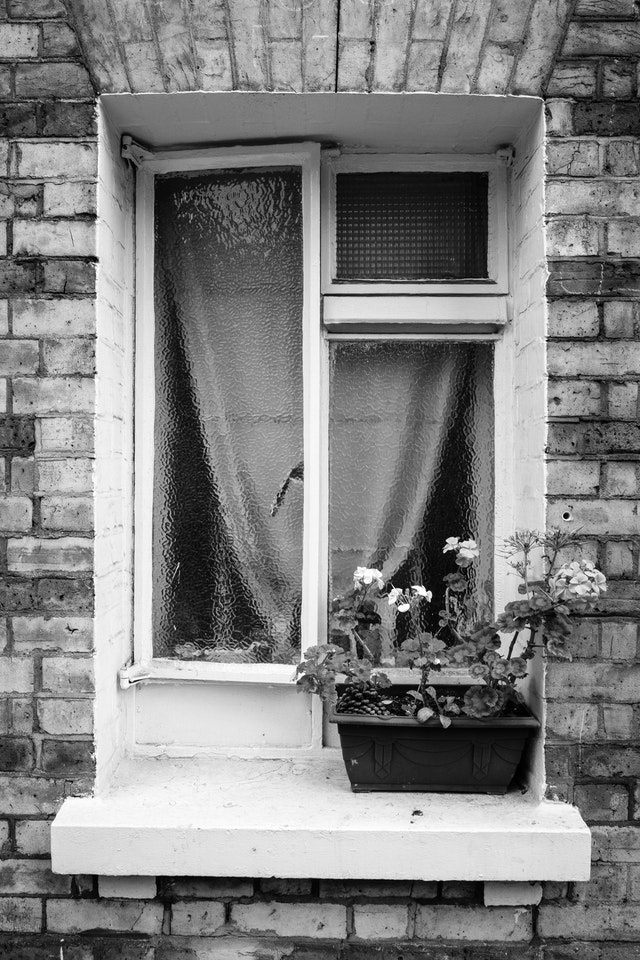 A flower pot in front of a window.