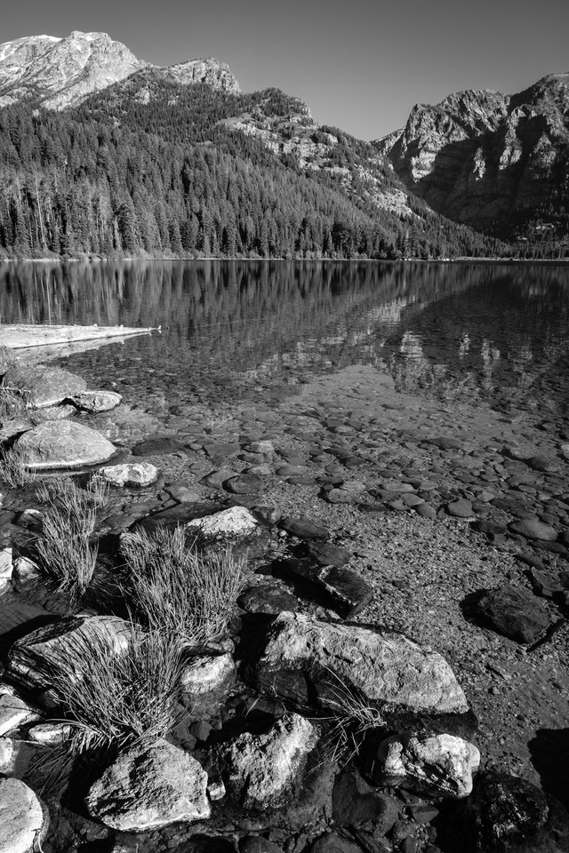 The shore of Phelps Lake in Grand Teton National Park. In the foreground, grass and rocks in the water. Death Canyon can be seen in the background.