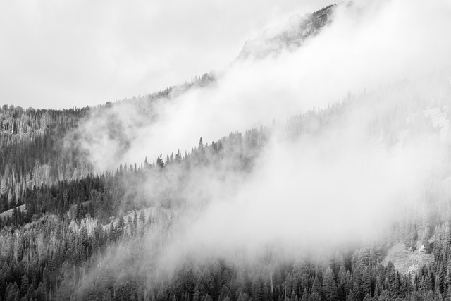 Morning fog rolling over hills in the Tetons.
