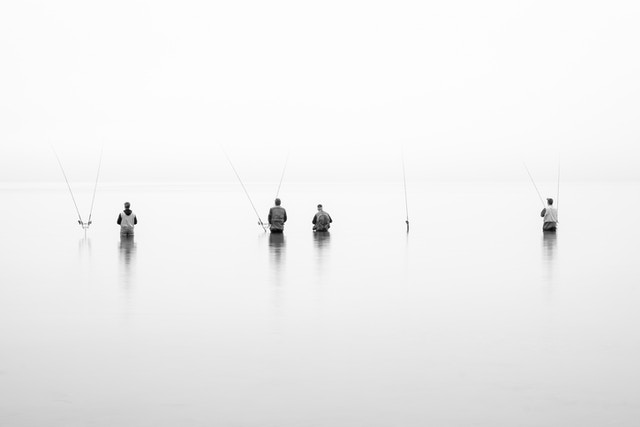 Four fishermen standing waist-deep in Lake Michigan, in thick fog.