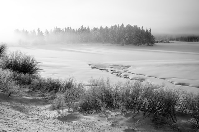 Oxbow Bend, covered in snow during a very cold, foggy morning.