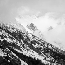 A hillside in the Tetons with Mount Moran in the background, shrouded in clouds.