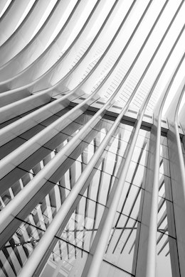 Looking up at the ribs of the Oculus and their reflection on the glass.