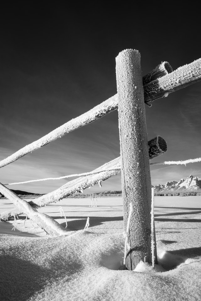 A frost-covered fence in the snow at Elk Ranch Flats. Grand Teton can be seen in the background.